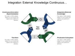 Integration External Knowledge Continuous Innovation Experimentation Personal Career