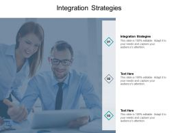 Integration Strategies Ppt Powerpoint Presentation Infographic Template Slide Portrait
