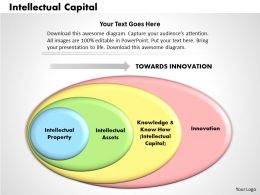 Intellectual Capital powerpoint presentation slide template