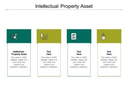 Intellectual Property Asset Ppt Powerpoint Presentation Gallery Files Cpb
