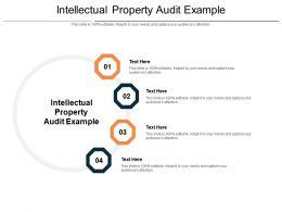 Intellectual Property Audit Example Ppt Powerpoint Presentation Portfolio Show Cpb