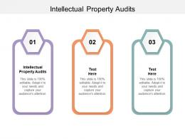 Intellectual Property Audits Ppt Powerpoint Presentation Professional Designs Download Cpb