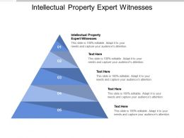 Intellectual Property Expert Witnesses Ppt Powerpoint Presentation Portfolio Picture Cpb
