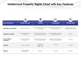 Intellectual Property Rights Chart With Key Features