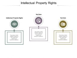 Intellectual Property Rights Ppt Powerpoint Presentation File Graphics Cpb