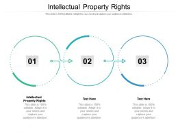 Intellectual Property Rights Ppt Powerpoint Presentation Infographics Example Introduction Cpb