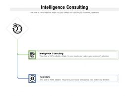 Intelligence Consulting Ppt Powerpoint Presentation Summary Ideas