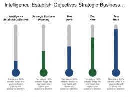 Intelligence Establish Objectives Strategic Business Planning Conclusions Implementation