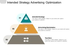 Intended Strategy Advertising Optimization Manufacturing Strategy Purchasing Strategy Cpb