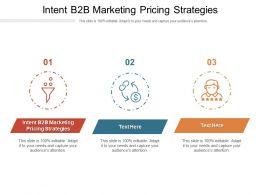 Intent B2B Marketing Pricing Strategies Ppt Powerpoint Presentation Gallery Slide Cpb