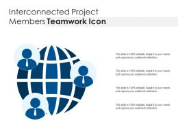 Interconnected Project Members Teamwork Icon