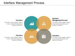 Interface Management Process Ppt Powerpoint Presentation Model Show Cpb