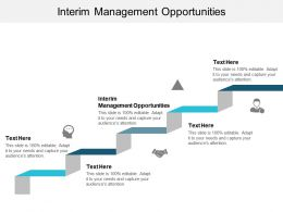 Interim Management Opportunities Ppt Powerpoint Presentation Styles Styles Cpb