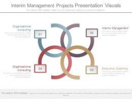 Interim Management Projects Presentation Visuals
