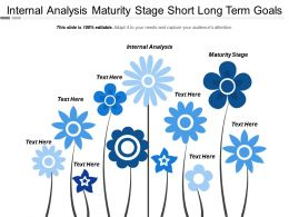 Internal Analysis Maturity Stage Short Long Term Goals Cpb