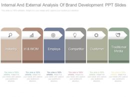 Internal And External Analysis Of Brand Development Ppt Slides