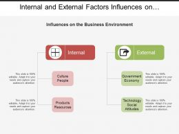 Internal And External Factors Influences On Business Environment