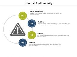 Internal Audit Activity Ppt Powerpoint Presentation Icon Design Templates Cpb