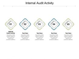 Internal Audit Activity Ppt Powerpoint Presentation Styles Outfit Cpb