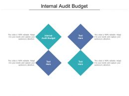 Internal Audit Budget Ppt Powerpoint Presentation Pictures Graphic Images Cpb