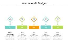 Internal Audit Budget Ppt Powerpoint Presentation Slides Portrait Cpb