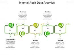 Internal Audit Data Analytics Ppt Powerpoint Presentation Layouts Microsoft Cpb