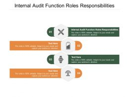 Internal Audit Function Roles Responsibilities Ppt Powerpoint Presentation Icons Cpb