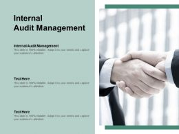 Internal Audit Management Ppt Powerpoint Presentation Inspiration Background Cpb