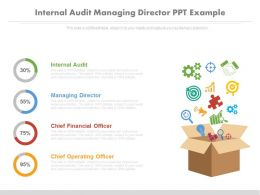 Internal Audit Managing Director Ppt Example
