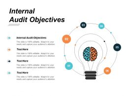 Internal Audit Objectives Ppt Powerpoint Presentation Inspiration Ideas Cpb