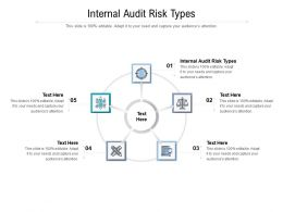 Internal Audit Risk Types Ppt Powerpoint Presentation Layouts Graphics Pictures Cpb