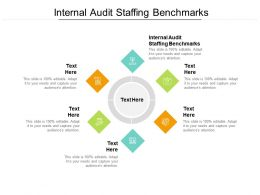 Internal Audit Staffing Benchmarks Ppt Powerpoint Presentation Styles Topics Cpb