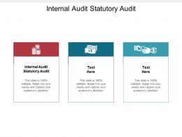 Internal Audit Statutory Audit Ppt Powerpoint Presentation Model Styles Cpb