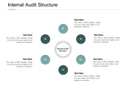 Internal Audit Structure Ppt Powerpoint Presentation Infographics Guide Cpb