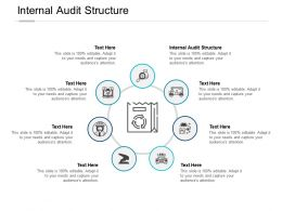 Internal Audit Structure Ppt Powerpoint Presentation Summary Pictures Cpb