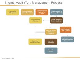 Internal Audit Work Management Process Ppt Example File