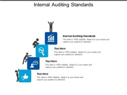 Internal Auditing Standards Ppt Powerpoint Presentation Gallery Shapes Cpb
