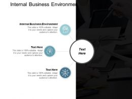 Internal Business Environment Ppt Powerpoint Presentation Model Inspiration Cpb