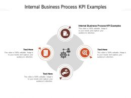 Internal Business Process KPI Examples Ppt Powerpoint Presentation Ideas Display Cpb
