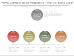 Internal Business Process Perspectives Powerpoint Slides Design