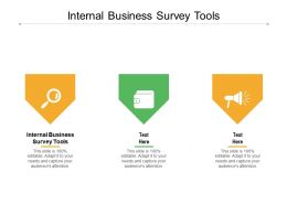 Internal Business Survey Tools Ppt Powerpoint Presentation Portfolio Graphic Images Cpb