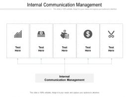 Internal Communication Management Ppt Powerpoint Presentation File Clipart Images Cpb