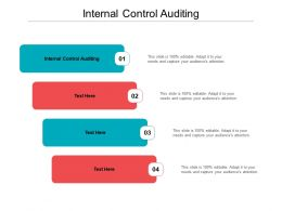Internal Control Auditing Ppt Powerpoint Presentation Outline Graphics Template Cpb