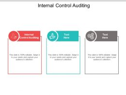 Internal Control Auditing Ppt Powerpoint Presentation Slides Images Cpb