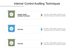 Internal Control Auditing Techniques Ppt Powerpoint Presentation Slides Demonstration Cpb