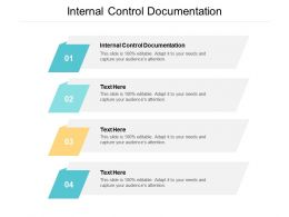 Internal Control Documentation Ppt Powerpoint Presentation Styles Slides Cpb