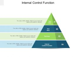 Internal Control Function Ppt Powerpoint Presentation Model Cpb