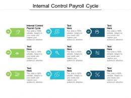 Internal Control Payroll Cycle Ppt Powerpoint Presentation Styles Portrait Cpb