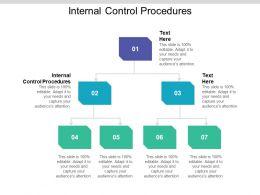 Internal Control Procedures Ppt Powerpoint Presentation File Skills Cpb