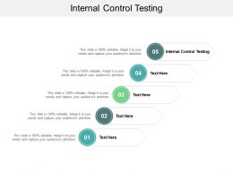 Internal Control Testing Ppt Powerpoint Presentation Infographic Template Ideas Cpb